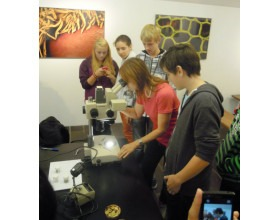 Workshop o mikrofotografii