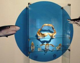 Predátoři - výstava zahájena 22. 1. 2015