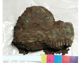 Kostěný hřeben s bronzovými nýtky, doba stěhování národů. Stav před konzervací.