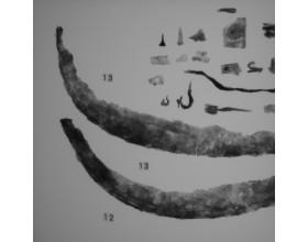 Archeologický průzkum Libčice 1982 Pozitiv.