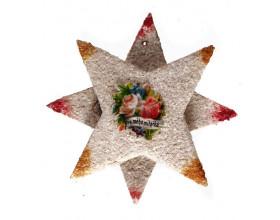 Vánoční ozdoba ve tvaru hvězdy, karton sypaný balotinou, Železnobrodsko, 2. třetina 20. století
