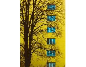 Výstava Obrazy Roztok - fotografie Attily Zinčaka