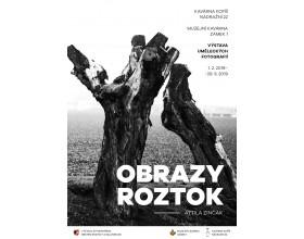 Výstava Obrazy Roztok - fotografie Attily Zinčaka v Muzejní kavárně ve Středočeském muzeu v Roztokách u Prahy
