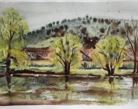 Kurz akvarelu